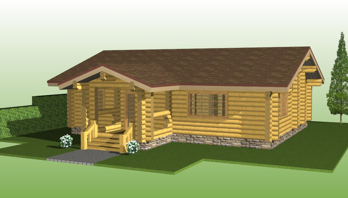 One-story wooden house project №1